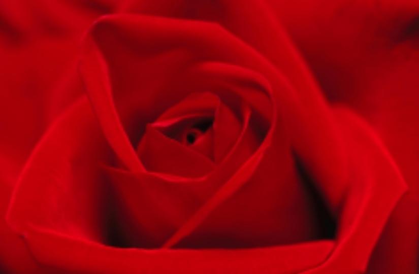 Guarigione Angelica della Sessualità per l'Amore Infinito tra il Femminile e ilMaschile